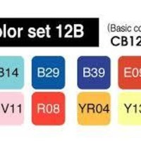 12 Pack Copic Markers 12B