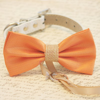 Orange and burlap Dog Bow Tie, Dog ring bearer, Pet Wedding accessory, Burlap Wedding accessory, Rustic wedding idea