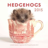 Walmart: Hedgehogs 2015 Calendar: 16-month Calendar September 2014 Through December 2015