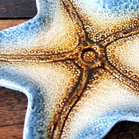 Vintage Starfish Dish Tray, Soap Jewelry Change Holder, Nautical Beach Decor Art Pottery