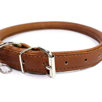 Rolled Soft Leather Dog Collar Soft Padded Sizes XXXS XXS XS S M L  Miniature to Large breeds