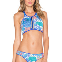 Maaji Lace Back Bikini Top in Sapphire Surfer
