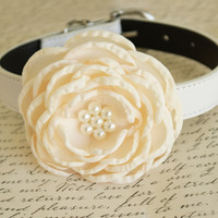Ivory Flower dog Wedding collar, Dog gift, Pet accessory, Ivory wedding