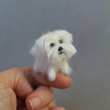 Custom order Ooak Needle Felted miniature dog-eco friendly art-Collectible artist animals-Maltese-doll house 1 inch. 1:12