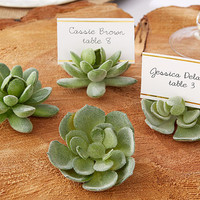 Succulent Place Card Holder (Set of 4)