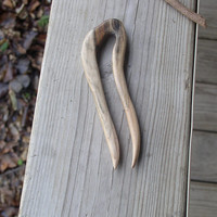 Hair Fork Spalted Chinaberry Wood 5 1/2 total inches (412)