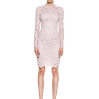 Lace Mini in Rose Couture