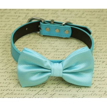 Light Blue dog Bow tie Collar, Pet wedding accessory, Something Blue, Beach Wedding