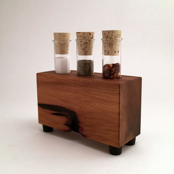 Salt and Pepper Test Tubes Holder in Reclaimed Cedar Wood, Choice of Rustic and Modern, Kitchen Decor