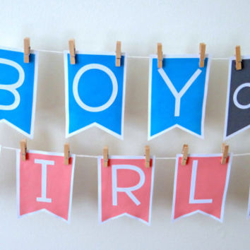 Gender Reveal Banner Boy or Girl | Gender Reveal Banner | Boy or Girl Gender Reveal