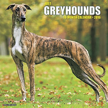 Winner's Guide to Greyhound Racing, Third Edition
