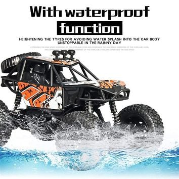RC Car Scale 1/20  4WD High Speed RC Crawler Climber Buggy Off-Road Rock Model RTR Waterproof