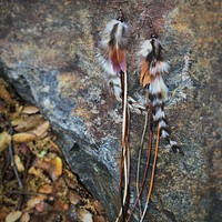 Joplin Feather Earrings