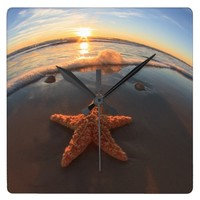 Starfish on Beach at Sunset