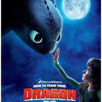 How to Train Your Dragon Movie Poster 11x17