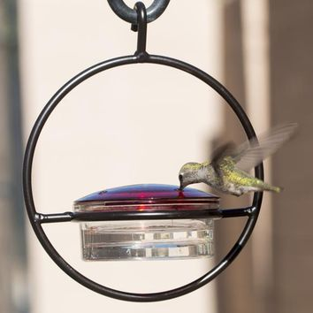Beautiful Small Glass Hanging Hummingbird Feeder - Attracts Hummers Like Crazy!
