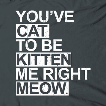 You've cat to be kitten me right meow  humor by TheShirtDudes