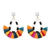 Colorful Small Tassle Earrings