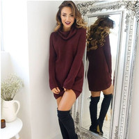 Fashion Wine Red High Neck Rib Sweater Dress Autumn Winter +Free Gift - Random Choker