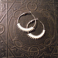 Real Rattlesnake Spine Vertebrae Hoop Earrings Haute Goth
