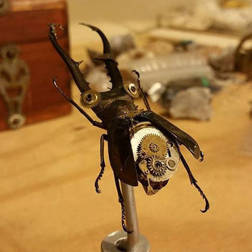 "The ""Bionic Beetle Juice"" Steampunk Sculpture Series- Custom Order"