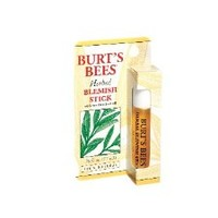 Burt's Bees Herbal Blemish Stick, .26-Ounce Bottles (Pack of 2)