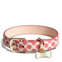 POPPY POLKA DOT COLLAR