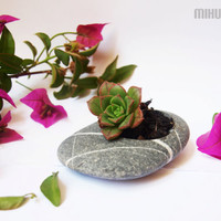 feng shui  hand engraved beach stone flower planter  by Mihulli