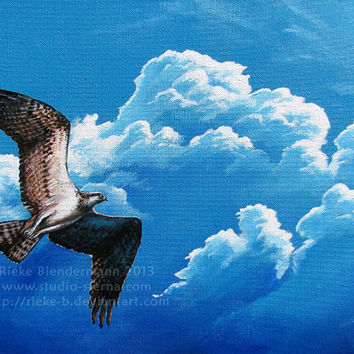 Original acrylic painting osprey 30x40cm 16x12 inches signed varnished eagle bird of prey animal sky clouds