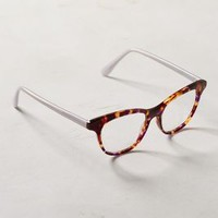 High Brow Reading Glasses by Anthropologie Brown Motif