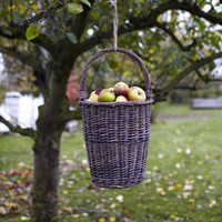 Hanging Basket — Cox  Cox, the difference between house and home.