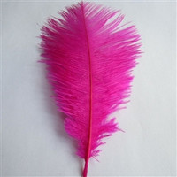 Decorative Ostrich Feathers, 15-inch, 1-feather, Fuchsia