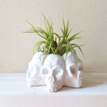 Skull mini planter, Halloween air plant holder, mini desk planter, dorm decor, handmade
