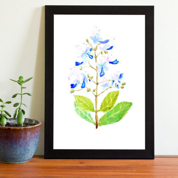 Vintage Botanical Print Watercolor Print blue flower floral arts wall decor home decor wall art flower girl gift watercolor art