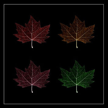 Maple Leaf Collage Metallic Art Seasons