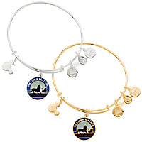 The Lion King ''Hakuna Matata'' Bangle by Alex and Ani