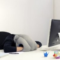 Studio Banana Things The Original Authentic Ostrich Pillow