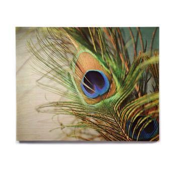 "Sylvia Cook ""Teal Peacock Feather"" Birchwood Wall Art"