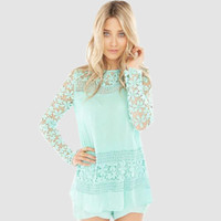 Sheer Mesh Floral Lace  Embroidered Detail Long Sleeve Top