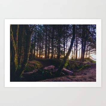 Wooded Tofino Art Print by Mixed Imagery