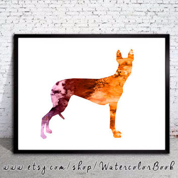Pharaoh Hound 2 Watercolor Print, Pharaoh Hound Art, Home Decor, dog watercolor, watercolor painting, dog watercolor, art print , dog art