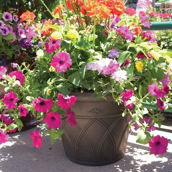 Pride Garden Products 12 in. Arch Brown Terrain Planter (2-Pack)-81207 at The Home Depot