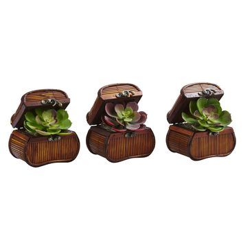 Artificial Flowers -Echeveria In Chest -Set Of 3 Artificial Plant