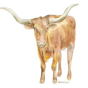 Longhorn Watercolor - Texas Art - Landscape format