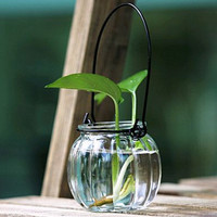 Hanging glass vase 03