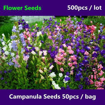 ^^Beautifying Campanula Seeds For Planting 500pcs, Widely Cultivated Perennial Courtyard Flower Seed, Campanula Bellflowers Seed