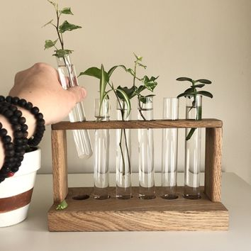 Propagation Station with Glass Test Tubes Included