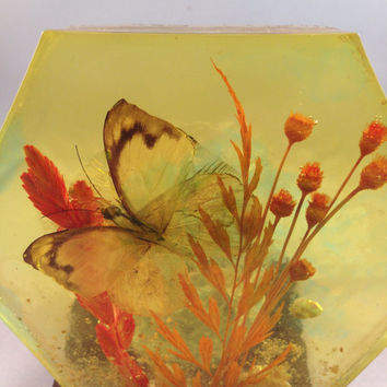 Candle Holder with butterfly and flowers embedded in glass, Colorflo Decorator Products