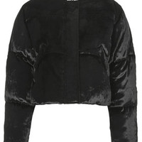 **Velvet Cropped Padded Jacket by Unique - Black