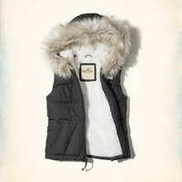 Girls Sherpa-Lined Hooded Puffer Vest | Girls Jackets & Coats | HollisterCo.com